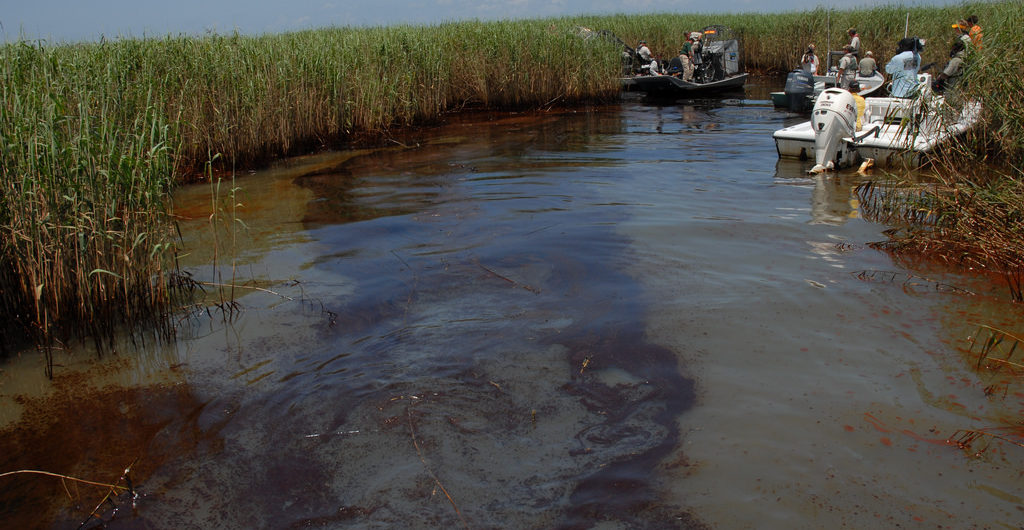 Oil impact on Louisiana water